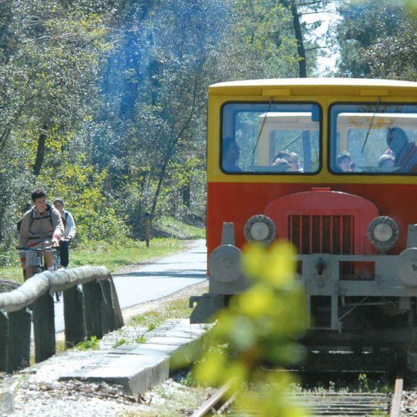 petit train Soulac