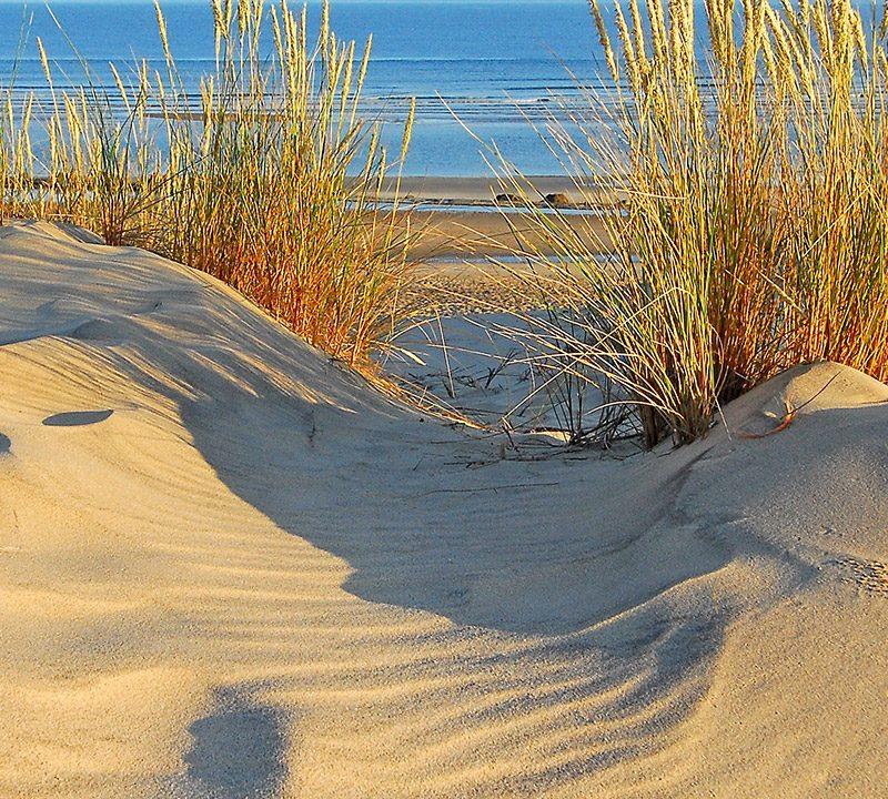 Rencontres érosion du littoral